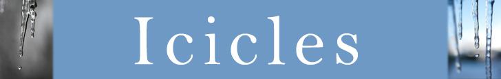 SegPlayPC_ICIBanner.jpg